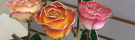 Give a Real Rose…